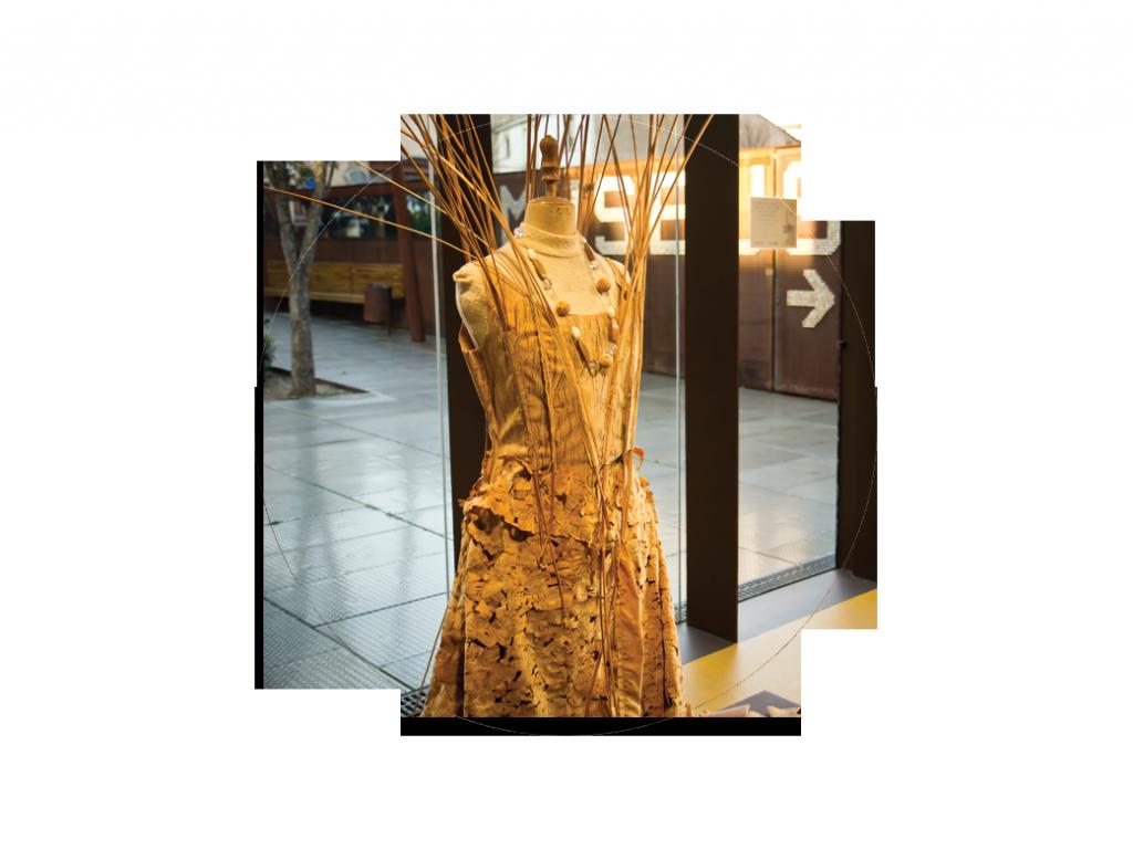 Un vestit nou
